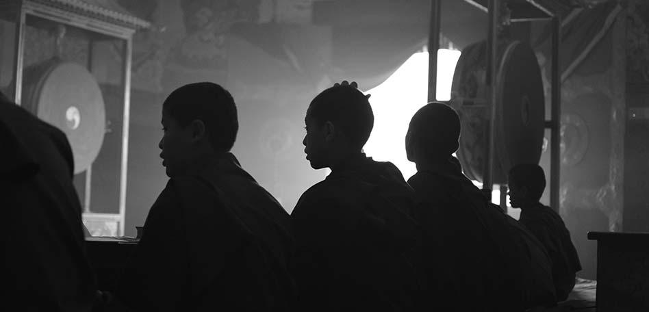 meditacion para niños monjes jovendes budistas meditando